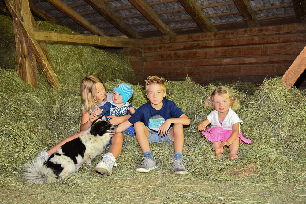 Echtes Bauernhofleben auf dem Tratterhof